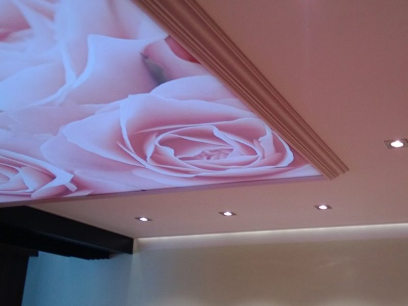 spanplafond met bedrukking antwerpen